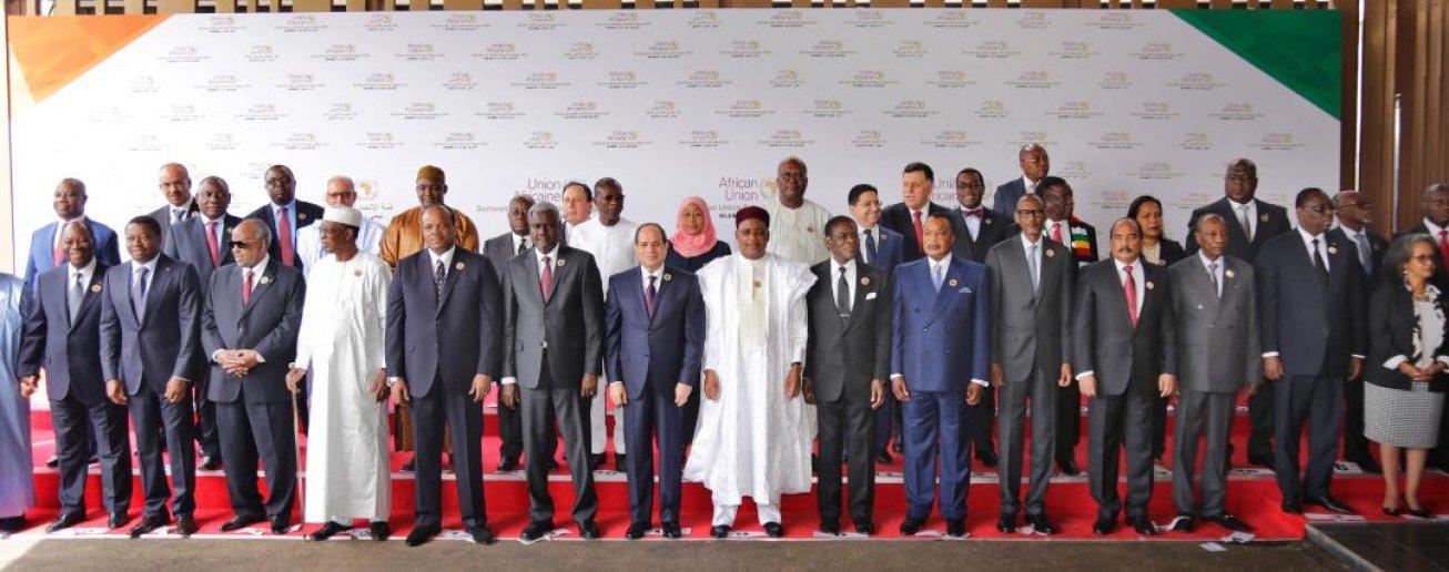 Les dirigeants africains participant à la 33e conférence au sommet de l'Union africaine à Niamey